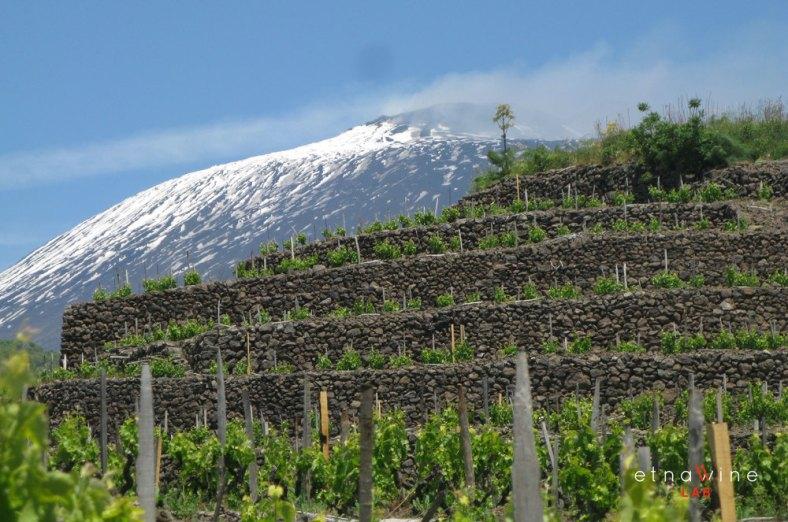 etna-wine-lab_firma-foto_20