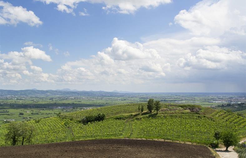 heuvels en vlakte Soave
